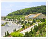 img_highway-oasis.jpg